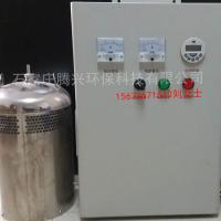 臭氧發生器定制WTS-2A內置水箱自潔殺菌消毒器