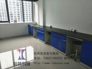 鋼木實驗臺廠家 信凱科技實驗臺通風柜試劑柜
