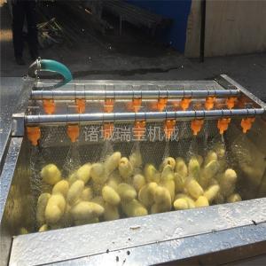 供應諸城瑞寶平輥清洗機 PG-6000型蘿卜清洗設備