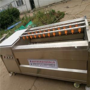 中藥材清洗機 瑞寶 MG-1500型土豆去皮清洗機  當歸清洗機