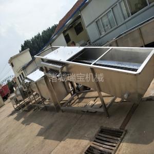 供應諸城瑞寶果蔬氣泡清洗機 QP-800型圣女果清洗機