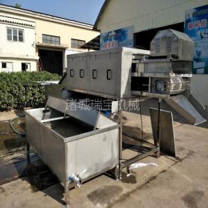 供应诸城瑞宝大姜清洗机 XJ-6000型洗姜机器