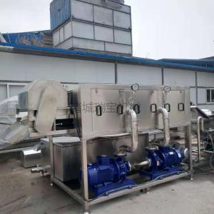 供用諸城瑞寶大姜清洗機 XJ-9000型洗姜機 小黃姜清洗機