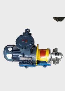泊欣-圓弧齒輪泵的結構與性能