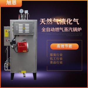 旭恩100KG燃液化氣蒸汽發生器