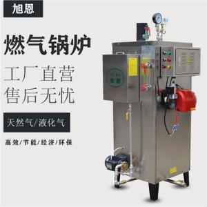 广东省全自动不锈钢天然燃气蒸汽发生器厂家锅炉