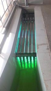 山東北漂明渠式紫外線消毒器