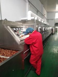 科尔新品红枣片,大枣微波干燥设备 红枣干燥机