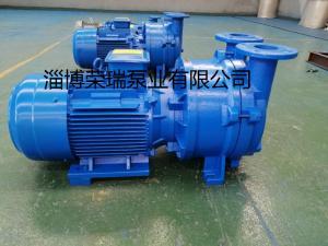 2BV5111淄博真空泵