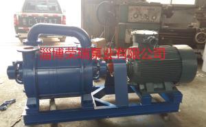 供应2SK-12水环真空泵