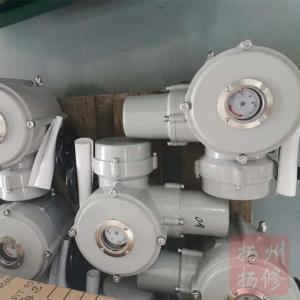 扬州扬修DC24V/AC110V角行程电动执行器特殊款