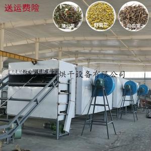 制药烘干机械-中药草烘干机 蒲公英干燥机