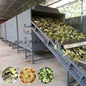 制药烘干机械-冬瓜皮烘干机 水梨片干燥机 中药饮片干燥设备