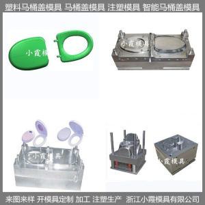 塑料模具馬桶模具